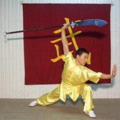 Wushu kung fu top jacket satin